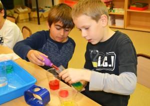Taller de Química - Gradients de densitat amb sucre