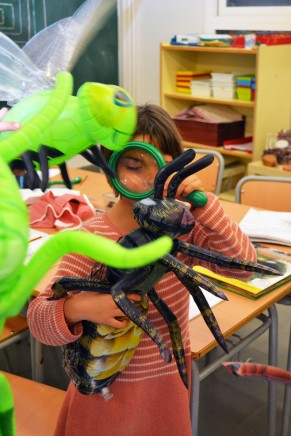 Tallers extraescolars - El món dels Insectes