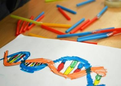 Tallers Extraescolars Ciència Biologia Cel·lular