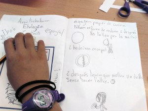 Tallers Extraescolars Ciència Etologia Crustacis Isòpodes Barcelona