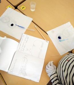 Taller de Biologia Cel·lular Microscòpia Extraescolars Barcelona