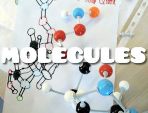 De què està feta la vida - Models moleculars