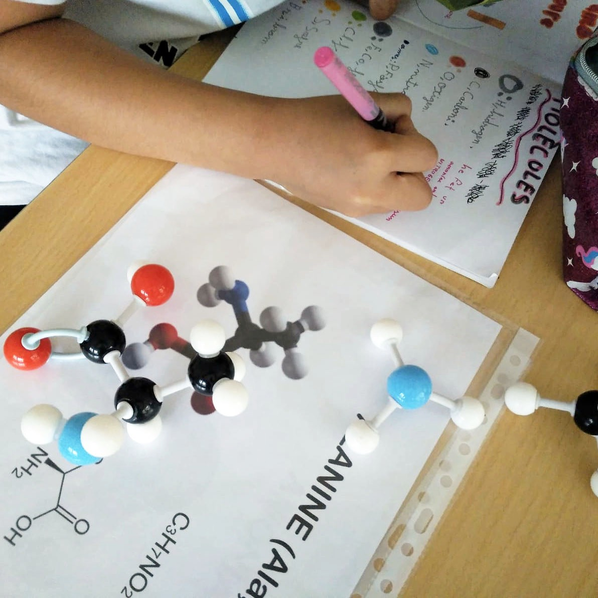 Tallers Ciència Models Moleculars