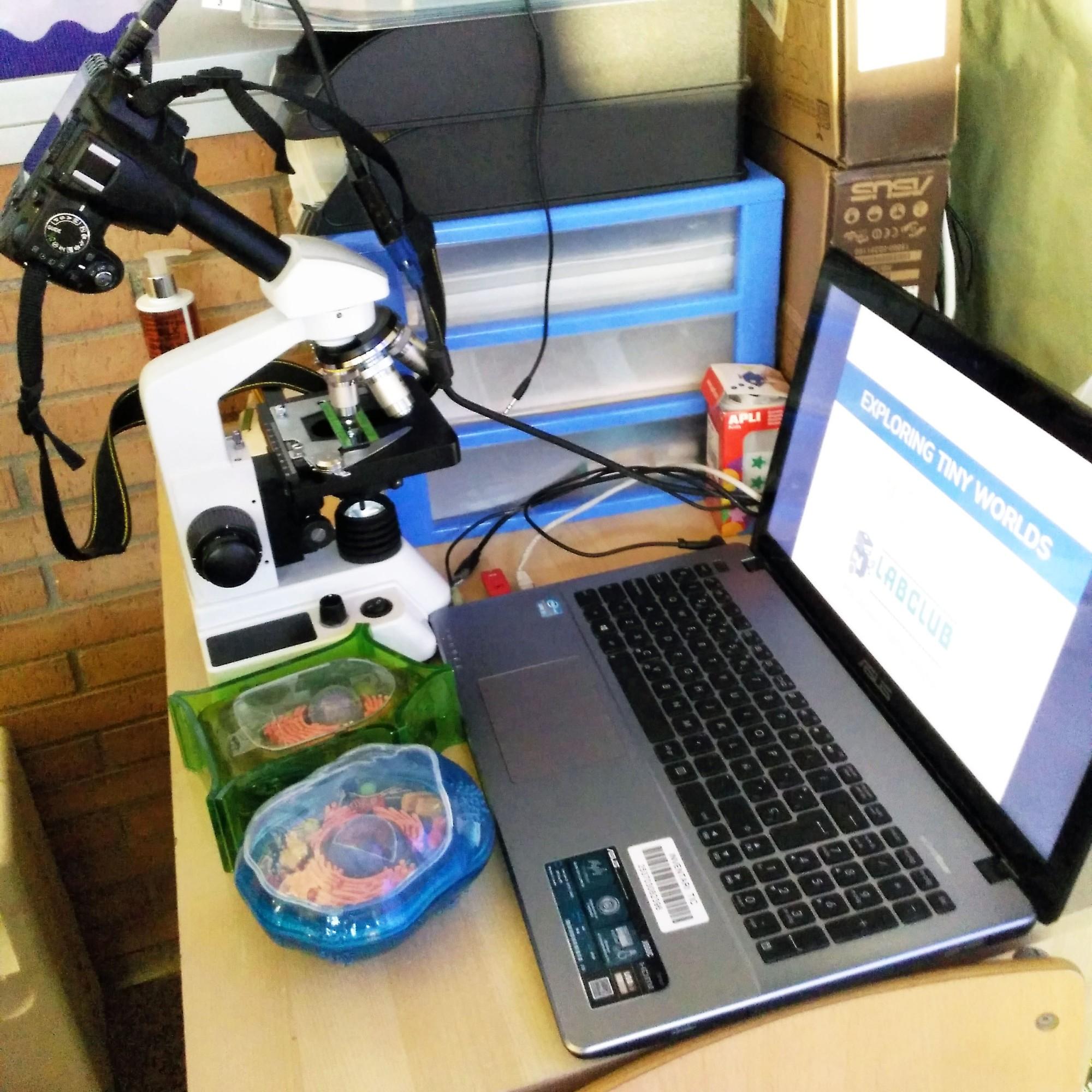 Taller de Biologia Cel·lular Microscòpia