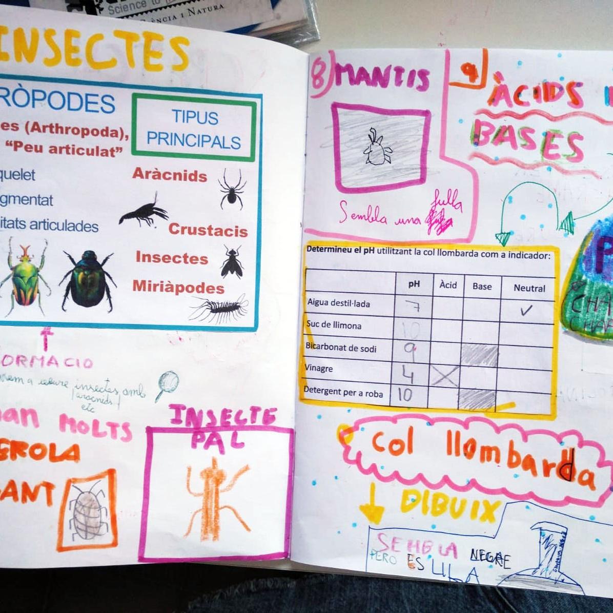 Tallers Ciència Química Biologia Insectes pH àcid base
